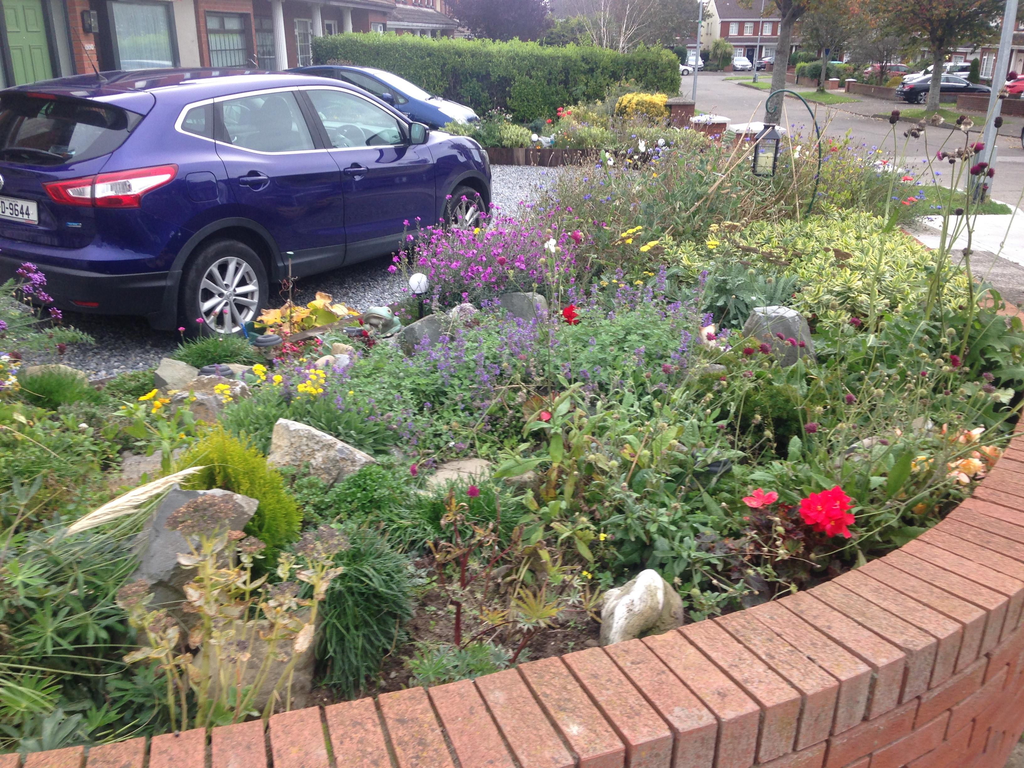 bee garden Oct 19
