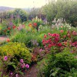 Cottage-garden_Cherry-Townsend-150x150